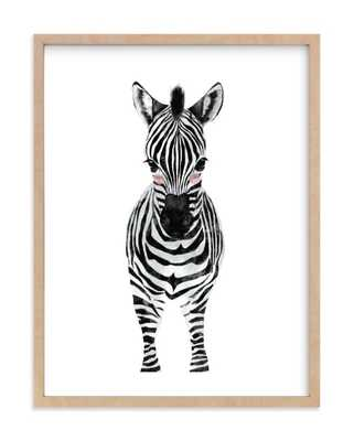 Baby Animal Zebra - 16 x 20 - Minted