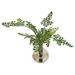 "14"" Maidenhair Fern in Vase, Faux - One Kings Lane"