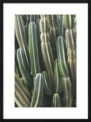 Southwest Cactus - 20x28 // Black Wood Frame with Matte - Artfully Walls