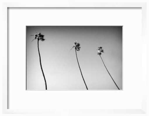"3 Palms - B&W , 3.5"" border, crisp bright white - art.com"