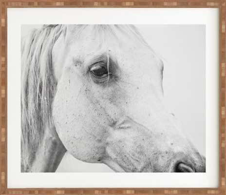 HORSE EYE Framed Wall Art - Wander Print Co.