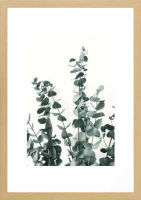 """Eucalyptus Leaves Framed Art Print-  15"""" X 21"""" - Conservation Natural Frame - Society6"""