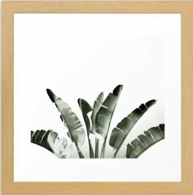 Traveler palm Framed Art Print - Conservation Natural - 12 x 12 - Society6