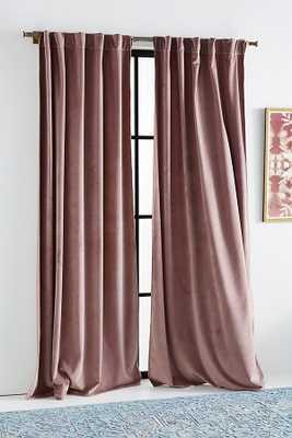 Velvet Louise Curtain - Anthropologie