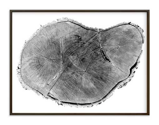 """Tree rings pt. 1 - 40"""" x 30"""" - Matte Black Metal Frame - Minted"""