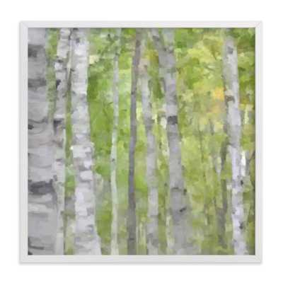 "Summer Birches  - 16"" x 16"" - White Wood Frame - Minted"
