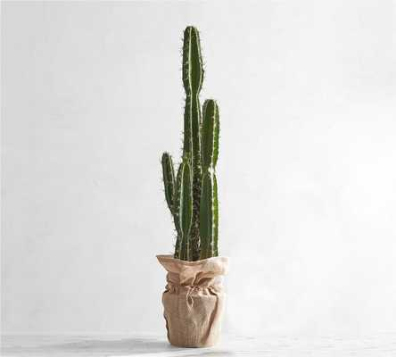 Faux Potted Saguaro Cactus - Extra Large - Pottery Barn