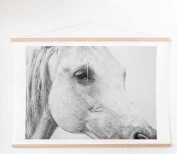 Horse Eye Art Print plus Hanger- 40x60 - Wander Print Co.
