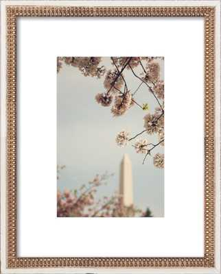"Spring in D.C. - 16x20"" - Distressed Cream Double Bead Wood Frame with Matte - Artfully Walls"