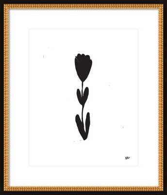 """Tulip Stem by Rob Blackard, 20"""" x 24"""" - Artfully Walls"""