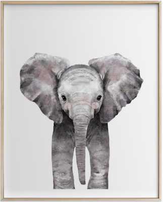 baby animal elephant - Minted