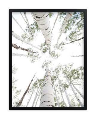 aspens at altitude -Wonderfully White - Minted