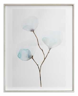 """Mokuren01 - 16"""" x 20"""" Brushed Silver Frame - Minted"""