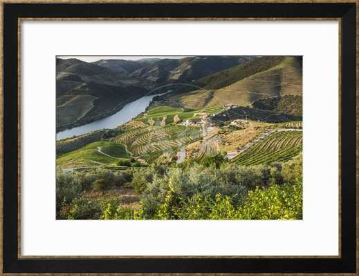 """Douro Valley, Douro River, Porto Valley is Lined with Steeply Sloping Hills and Vineyards, Finished Size 35"""" x 27"""" - art.com"""