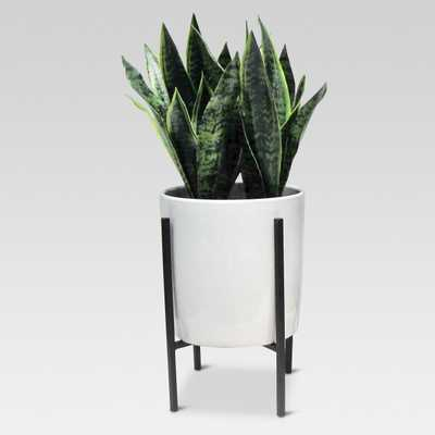 Artificial Plant in Stand Large - Target