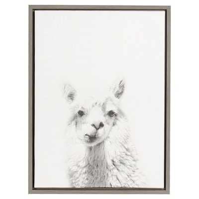 Alpaca Framed Canvas Art - Uniek - Target