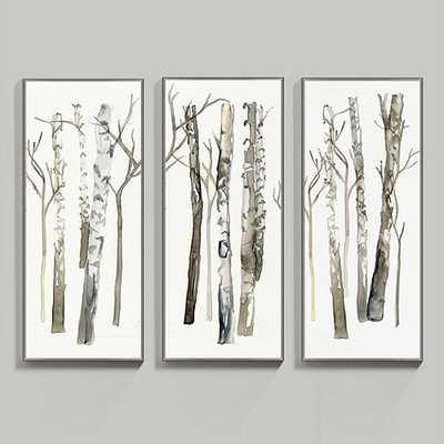 Fresh Birch Art - Set of 3 - Ballard Designs