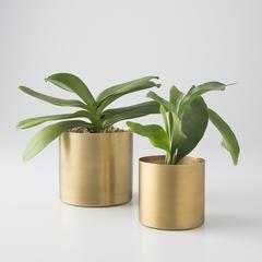 Small Brass Planter - Schoolhouse Electric
