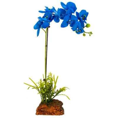 Everlasting Orchid Arrangement, Blue - Home Depot