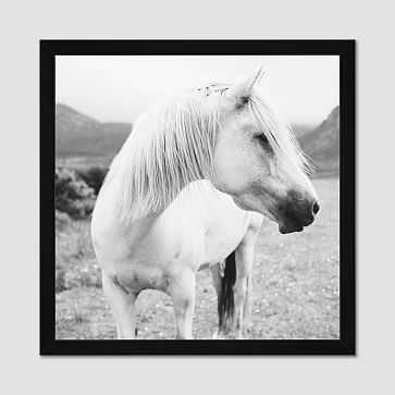 """Minted for west elm, Field Horse, 28""""x28"""" - West Elm"""