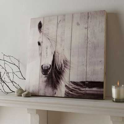 19.7 in. x 19.7 in. Horse by Graham and Brown Wooden Wall Art, Black And White - Home Depot
