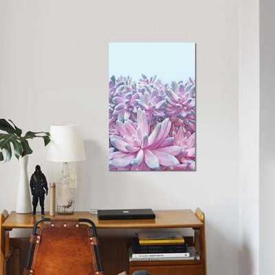 'Sweet Succulents' Graphic Art Print on Canvas - Wayfair
