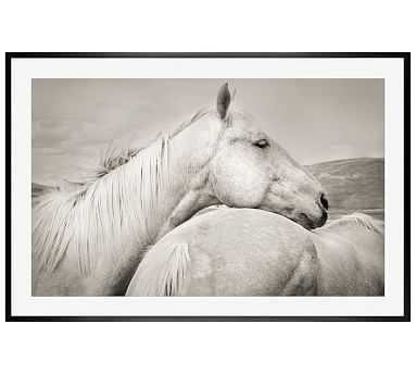 """Palominos Framed Print by Jennifer Meyers, 42 x 28"""", Wood Gallery Frame, Black, Mat - Pottery Barn"""