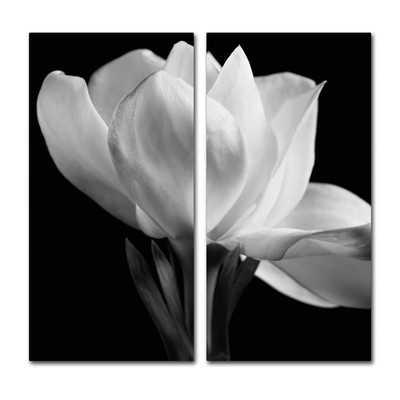 'Gardenia' Wall Art Set - Wayfair