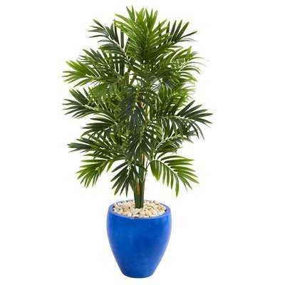 Areca Floor Palm Tree in Planter - Wayfair