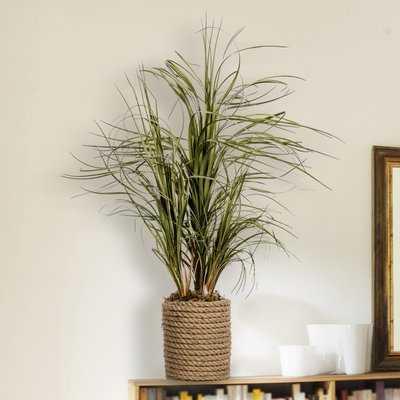 Plastic Grass in Cylinder Rope Decorative Vase - Birch Lane