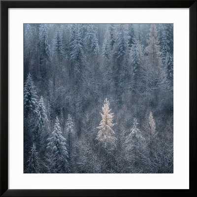 First Snow - art.com
