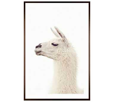 "Llama by Jennifer Meyers, 28 x 42"", Wood Gallery, Espresso, Mat - Pottery Barn"