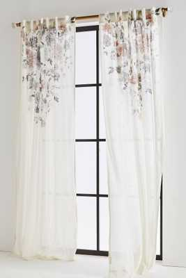 "Felicity Curtain - 84"" - Anthropologie"