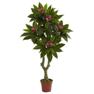 5 ft. UV Resistant Indoor/Outdoor Plumeria Tree - Home Depot