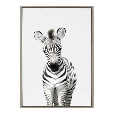 """Kate and Laurel Sylvie """"Animal Studio Zebra"""" by Amy Peterson Framed Canvas Wall Art, Gray - Home Depot"""