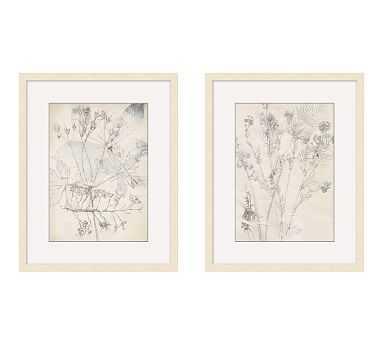 Ivory Foliage Print, Set of 2 - Pottery Barn