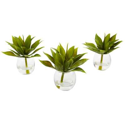 Agave Succulent with Vase (Set of 3) - Home Depot