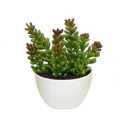 Minimalist Arrangement Desktop Succulent Faux Plant in Planter - Wayfair