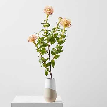 Faux Botanicals, Protea - West Elm