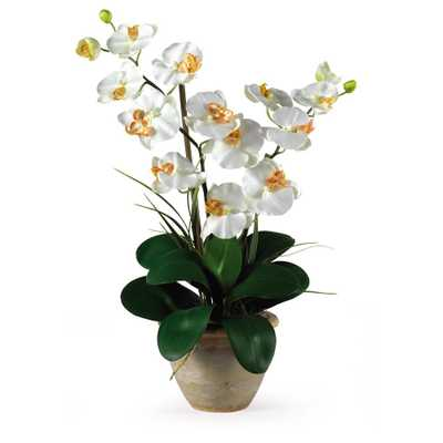 25 in. Double Stem Phalaenopsis Silk Orchid Flower Arrangement - Home Depot