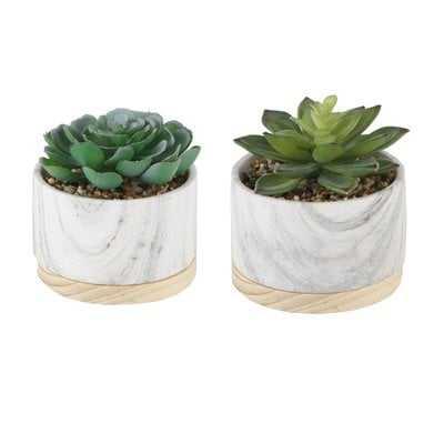 2 Piece Marbel/ Wood Base Desktop Succulent Plant Set - Wayfair