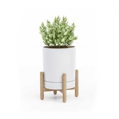 Blythe White/Natural Tabletop Plant Stand - Home Depot