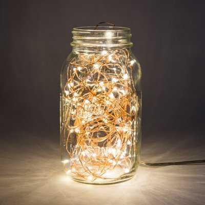 20-Light 6 ft. Fairy String Lights - Birch Lane