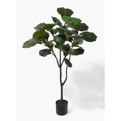Fiddle Leaf Fig Tree in Pot - Wayfair