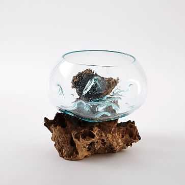 Wood + Glass Terrarium, Medium - West Elm