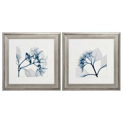 Hydrangeas Pos 2 Piece Framed Graphic Art Set - Wayfair