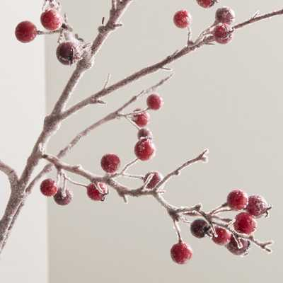 Icy Red Berry Stem Branch - Crate and Barrel