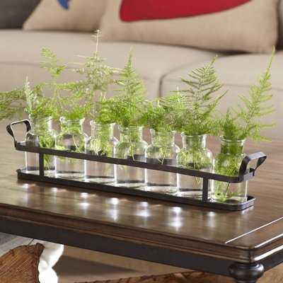 Paulk 8 Piece Jar Set - Wayfair