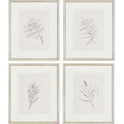 'Foliage' Framed Graphic Art Set - Birch Lane