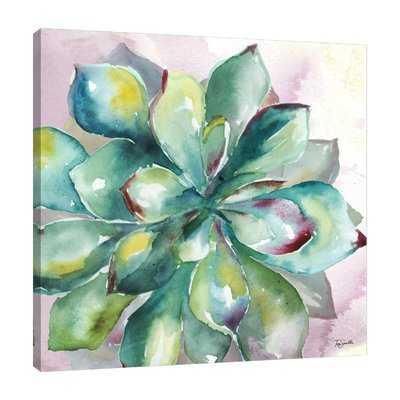 'Succulent' Print on Wrapped Canvas - Wayfair